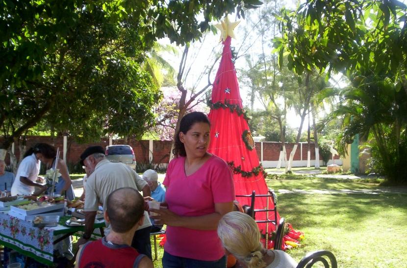 jardim rosas de saron: 2008 reportagem diario de pernambuco reportagem diario de pernambuco